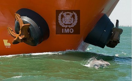 Understanding IMO Conventions, resolutions and Circulars