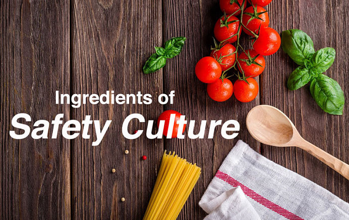 safety-culture-ingredients_opt